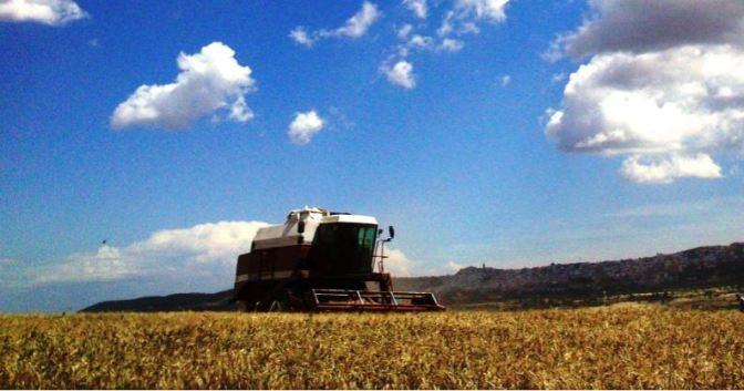 IMU sui terreni agricoli: mai una bella notizia!